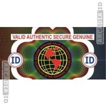 Valid Globe ID Card Hologram Overlay