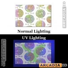 Shield and Key ID Card Hologram Overlay with UV Eagle